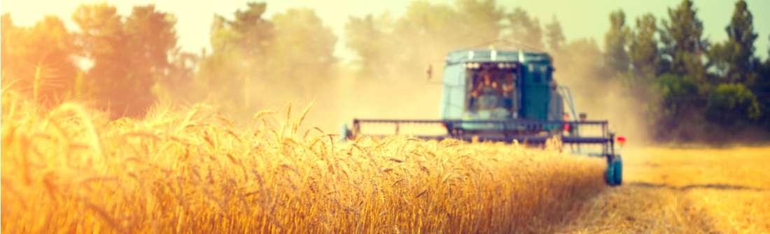 news in materia di agricoltura pj consulting