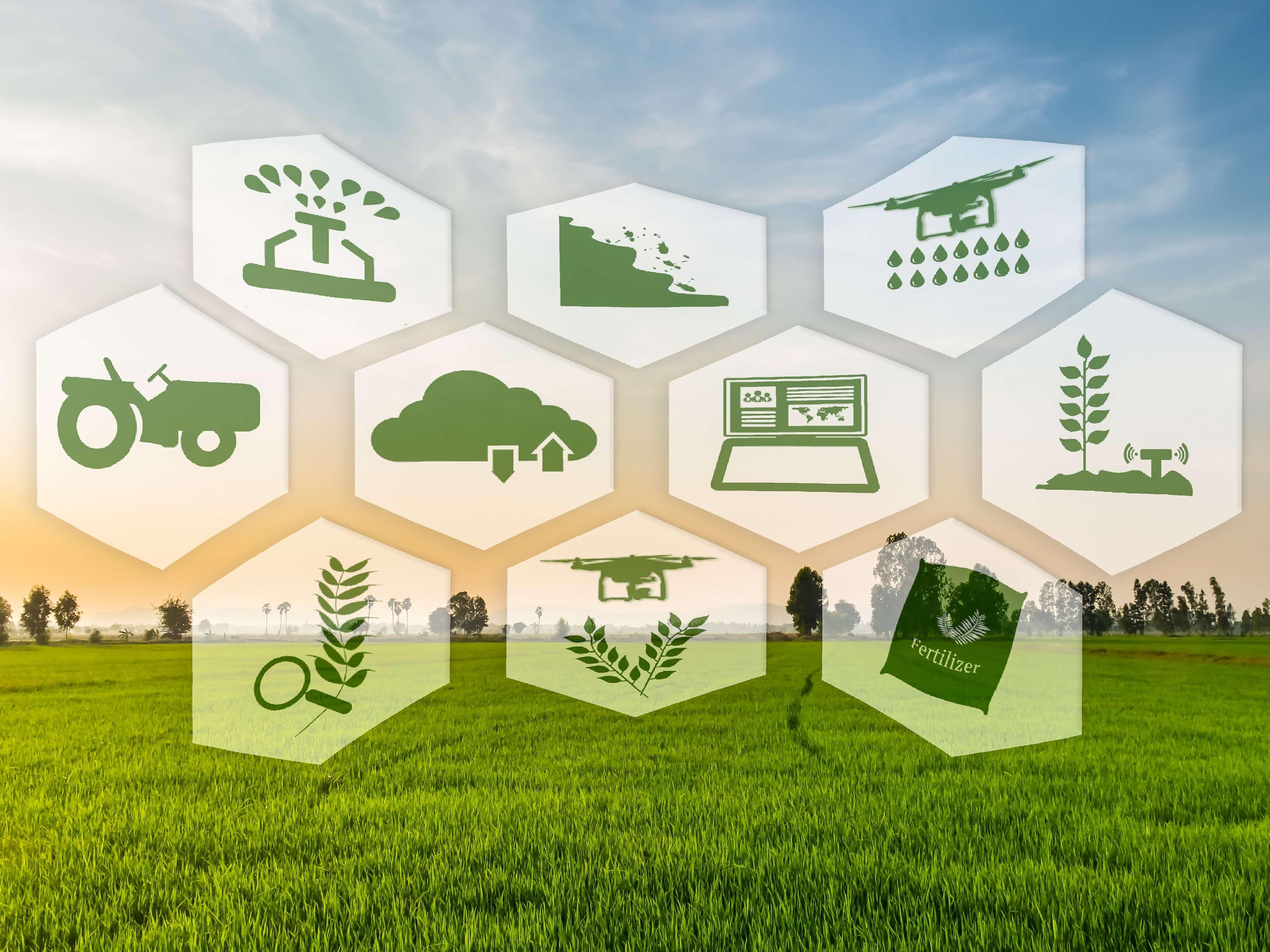 Al via la call del secondo programma di accelerazione Bravo Innovation Hub Agrifood